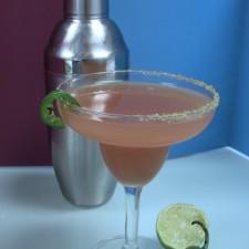 IMG 0368 225x225  Spicy Jalapeno Blood Orange Margaritas