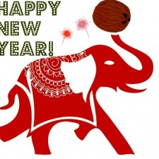Kelapo New Year1 225x225  Happy New Year's Eve!