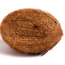 2892272 486609 whole coconut isolated on a white background 225x225  What's the Difference in Coconut Products?