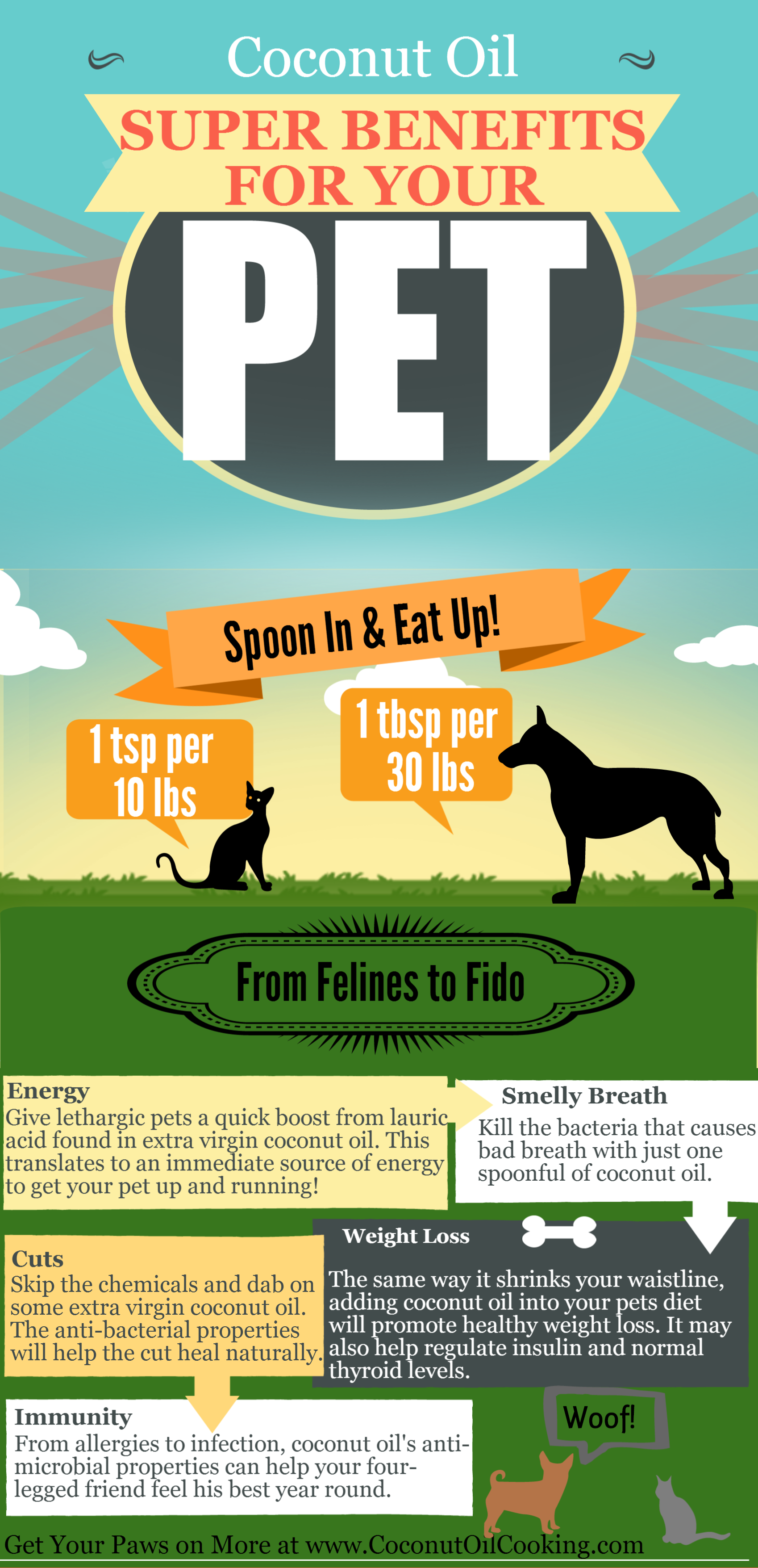 If your dog seems tired or uncomfortable or has diarrhea, reduce the amount temporarily. It may also be helpful to give the small amounts of coconut oil in divided doses throughout the day. Coconut oil is best given with food. Solid or liquid coconut oil can be added to food at any meal. Solid coconut oil can easily be melted quickly in hot water.