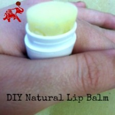 DIY Natural Lip Balm 225x225  The Daily Meal Top EVCO Uses