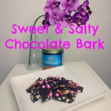 Pretzel Chocolate Bark 2 225x225  Sweet and Salty Pretzel Bark