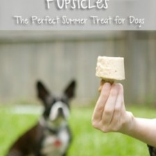 PB Dog Treats 225x225  Frozen Peanut Butter Pupsicles